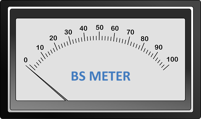 BS meter for SEO advice